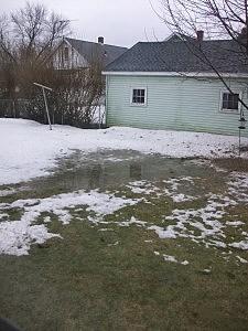 Soggy Backyard