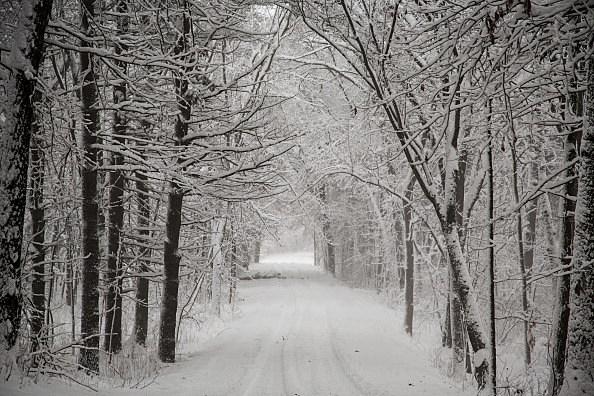 Winter Solstice 2013.
