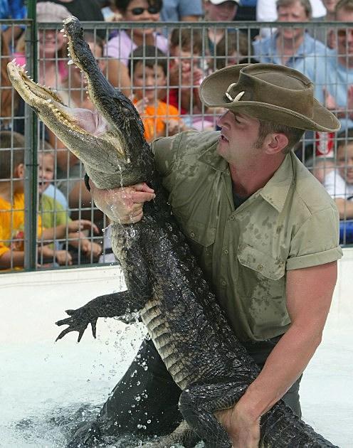 Man Wrestles Alligator At Calvert County Fair
