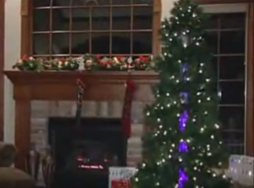 the new holiday trend bizarre colored christmas trees and bubble trees
