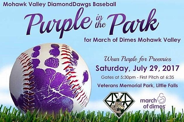 Purple in the Park-DiamondDawgs